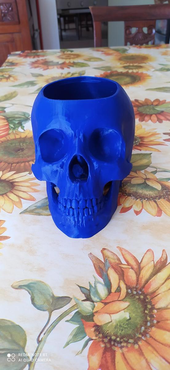 vaso per piante grasse in PLA blu dark Amazonbasic