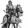 cavalieresenzafilo